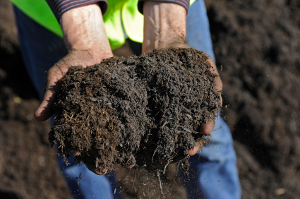 Why Soil Aeration Is Important
