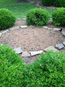 Leave Tree Stump Removals To The Professionals
