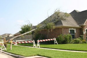 Read more about the article Protecting Your Property From Wind Damage