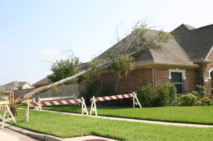 Protecting Your Property From Wind Damage