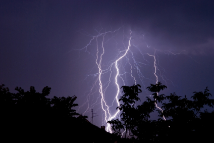 Protect Your Trees From Lightning Strikes