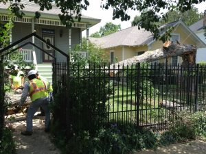 Trust Embark With Your Large or Delicate Tree Removal Projects, Part Two