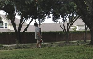 Read more about the article Is A Contracted Landscaper or Tree Crew Putting Your HOA At Risk?