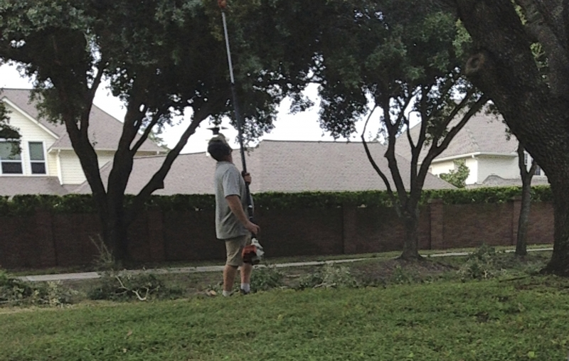Is A Contracted Landscaper or Tree Crew Putting Your HOA At Risk?