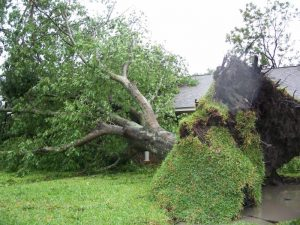 Read more about the article How Do You Prepare A Property For Hurricane Season?