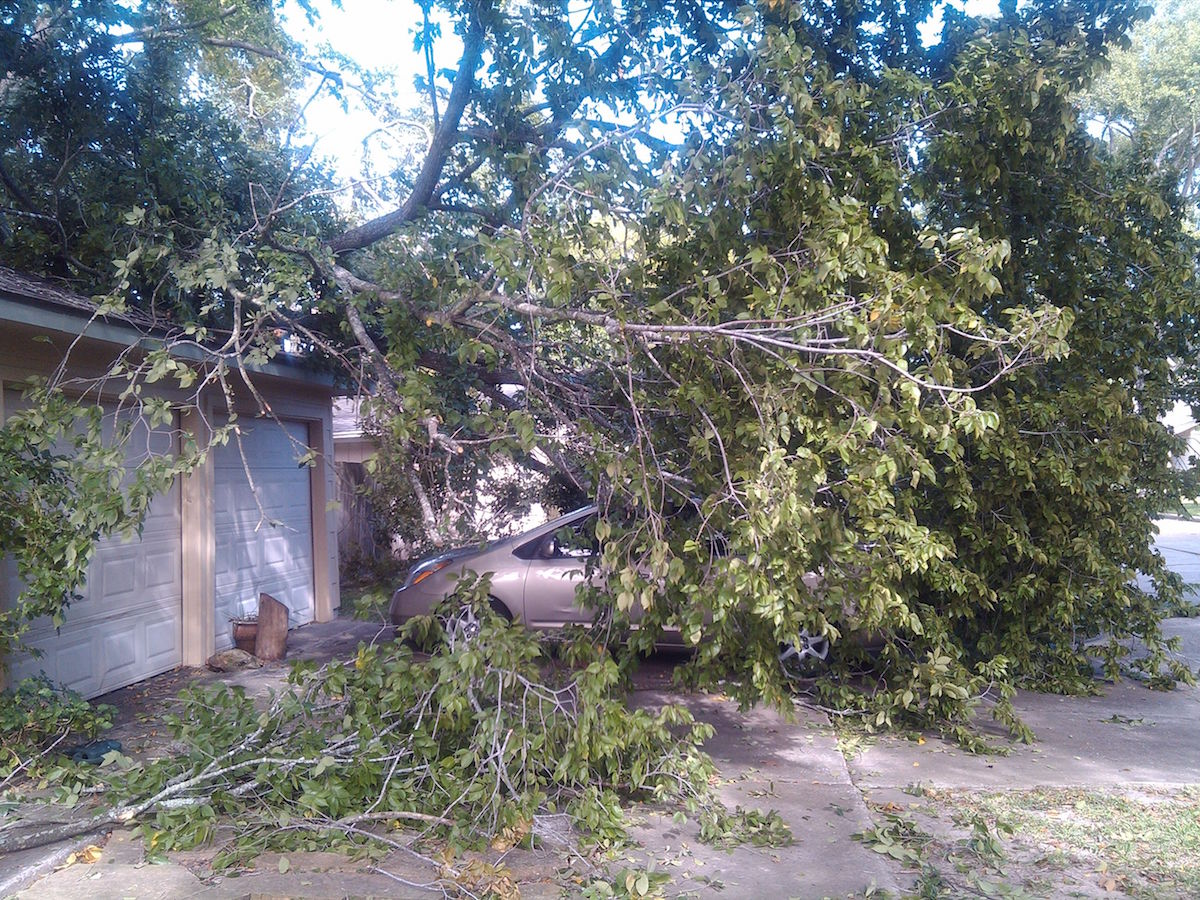 Why Property Owners Should Never Handle Tree Emergencies On Their Own