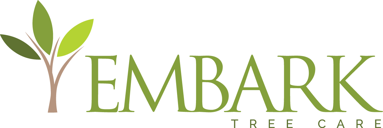 Embark Services