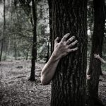 What are the zombie trees everybody's talking about and what can be done about them?